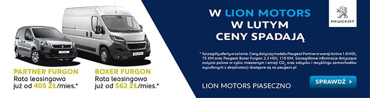 Lion Motors Piaseczno