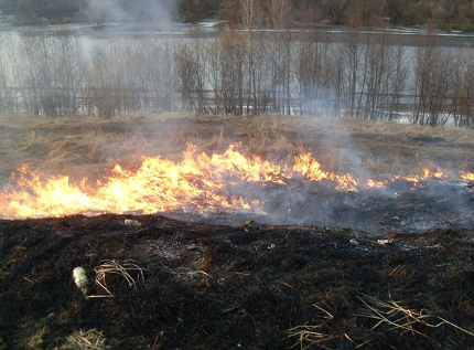 Wypalanie traw na Mazowszu