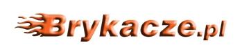 """brykacze.pl """"NOVA"""" Kozicka Beata - brykacze-logo.jpg"""
