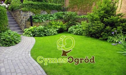 CYMES OGRÓD usługi ogrodnicze  - do oferii.jpg