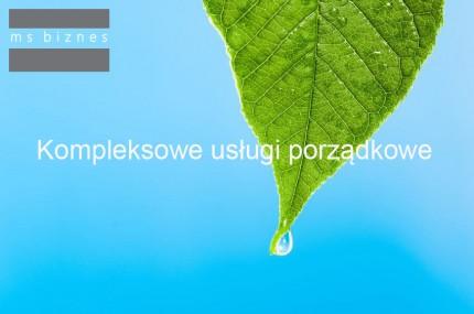 MS Biznes - logo 1.jpg