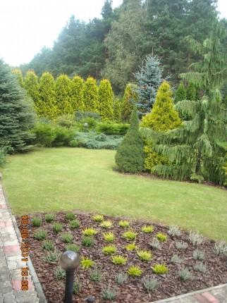 sprzatanie ,konserwacja zieleni,ogrody - nikon 100.JPG