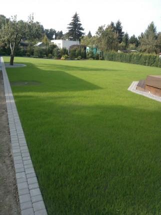 Wycinka drzew, zakładanie ogrodów, prace w ogrodzie  - WP_000102.jpg