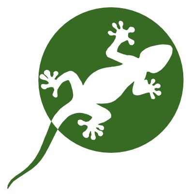 Anglista poszukiwany - jaszczurka (1).png