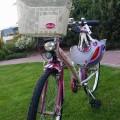 sprzedam rower dla dziewczynki 8-10 lat - 3.jpg