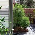Mieszkanie z ogródkiem 45 m2+31m2 zadbane, niebanalne - 20180426_131424.jpg